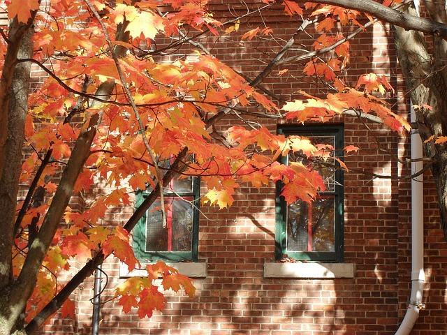 autumn-castro-valley-heating